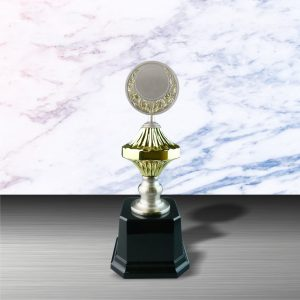Gold colored White Silver Trophies CTEXWS6054 – Exclusive Gold White Silver Trophy