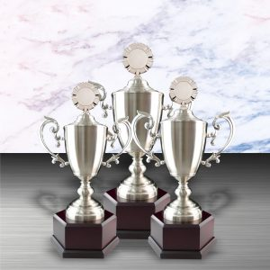 Silver Cup Trophies CTEXWS6058 – Exclusive White Silver Cup Trophy