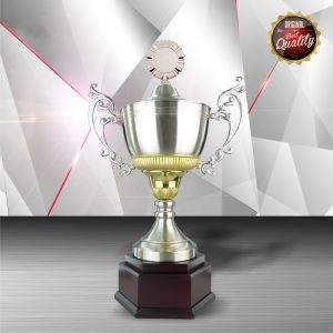 Silver Cup Trophies CTEXWS6061 – Exclusive Gold White Silver Cup Trophy