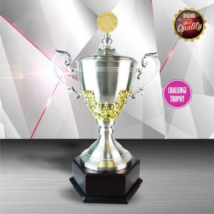Silver Cup Trophies CTEXWS6062 – Exclusive Gold White Silver Cup Trophy