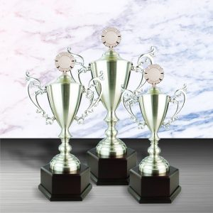 Silver Cup Trophies CTEXWS6064 – Exclusive White Silver Cup Trophy
