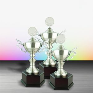 Silver Cup Trophies CTEXWS6065 – Exclusive White Silver Cup Trophy
