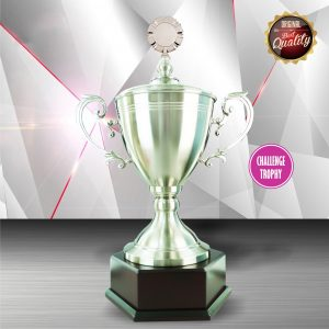 Silver Cup Trophies CTEXWS6066 – Exclusive White Silver Cup Trophy