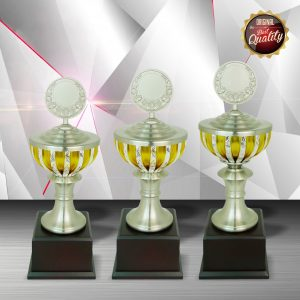 Silver Cup Trophies CTEXWS6074 – Exclusive Gold White Silver Trophy