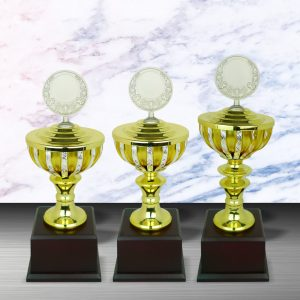 Silver Cup Trophies CTEXWS6076 – Exclusive Gold Silver Cup Trophy