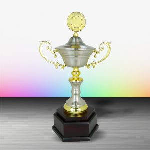 Silver Cup Trophies CTEXWS6077 – Exclusive Gold Silver Cup Trophy
