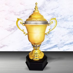 Silver Challenge Trophies CTEXWS6120 – Exclusive White Silver Trophy (Challenge Trophy)