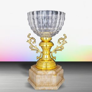 Silver Crystal Bowl Trophies CTEXWS6125 – Exclusive White Silver Crystal Bowl Trophy