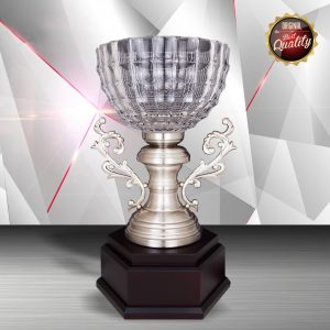 Silver Crystal Bowl Trophies CTEXWS6126 – Exclusive White Silver Crystal Bowl Trophy