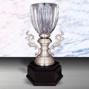 Silver Crystal Vase Trophies CTEXWS6130 – Exclusive White Silver Crystal Vase Trophy