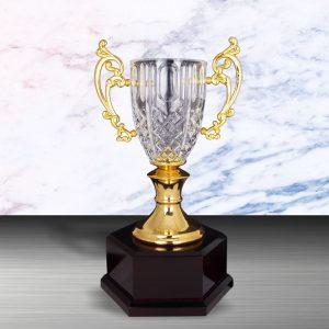 Silver Crystal Vase Trophies CTEXWS6133 – Exclusive White Silver Crystal Vase Trophy