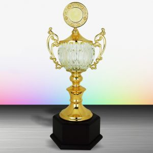 Silver Crystal Bowl Trophies CTEXWS6134 – Exclusive Gold Silver Crystal Bowl Trophy