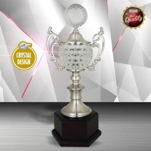 Silver Crystal Bowl Trophies CTEXWS6135 – Exclusive White Silver Crystal Bowl Trophy