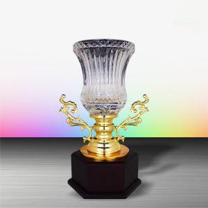 Silver Crystal Vase Trophies CTEXWS6146 – Exclusive Gold Silver Crystal Vase Trophy