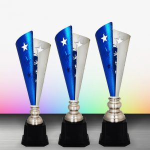 Silver Star Trophies CTEXWS6168 – Exclusive White Silver Star Trophy