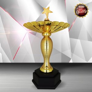 Silver Star Trophies CTEXWS6185 – Exclusive Gold Silver Star Trophy