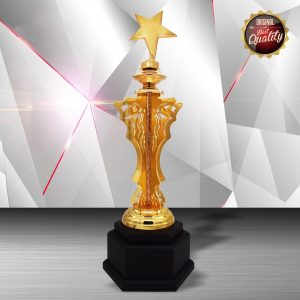 Silver Star Trophies CTEXWS6189 – Exclusive Gold Silver Star Trophy