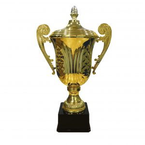 Grand Master Italian Cup Trophies CTICBAW984 – Gold Italian Cup