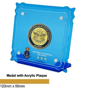Medal Acrylic Plaques CTSP5038 – Medal with Acrylic Plaque